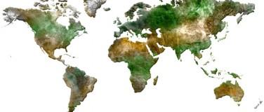 Worldwide Supply